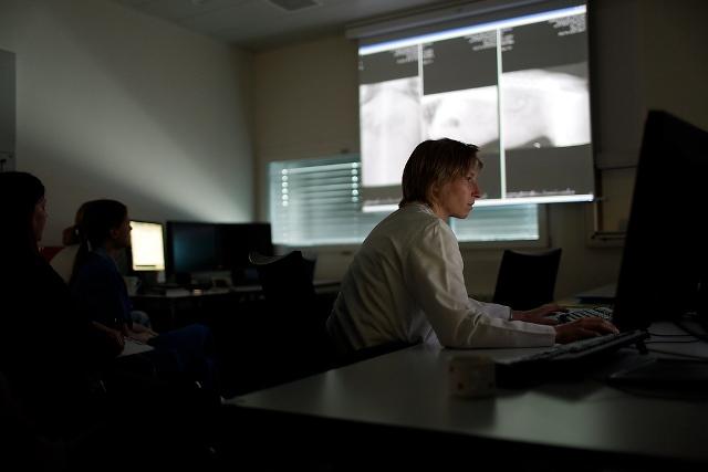 Radiologin betrachtet Röntgenbilder